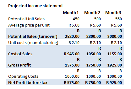 Business Financial Plan Income Statement